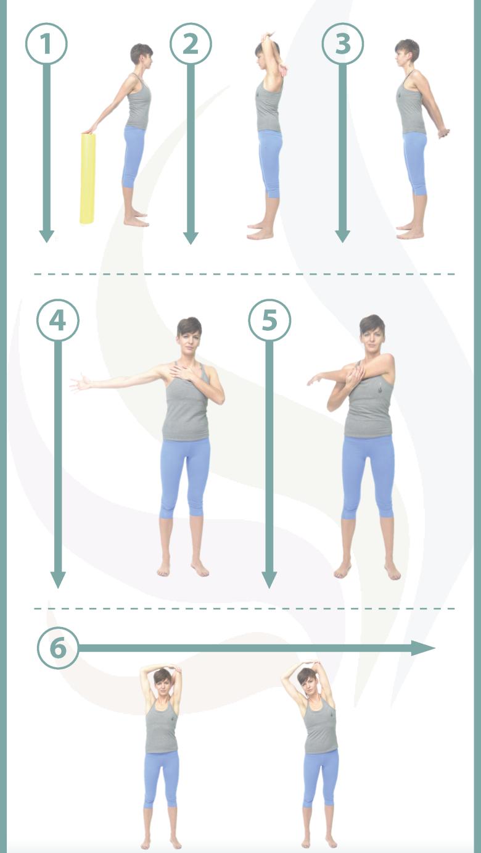 Preinscripción de ejercicio físico para la prevención y readaptación ...