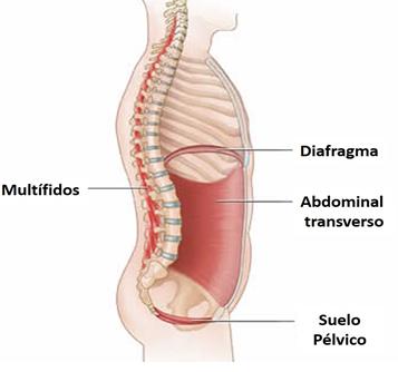 dolor abdominal en la región pélvica