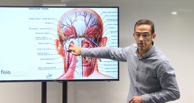 Fibrólisis diacutánea en la neuralgia occipital - | FisioCampus