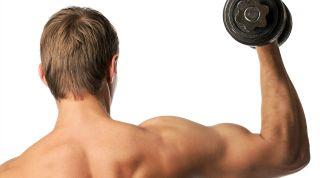 Readaptación de las lesiones musculares