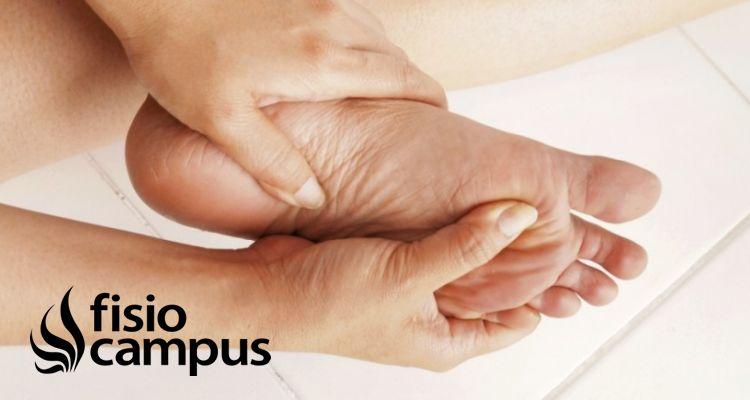 Influencias Musculares En La Fascitis Plantar Fisiocampus