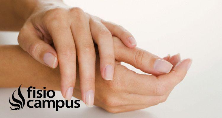 Reaprendizaje sensorial de la mano posterior a una reparación nerviosa