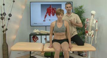 Anatomía Palpatoria   FisioCampus