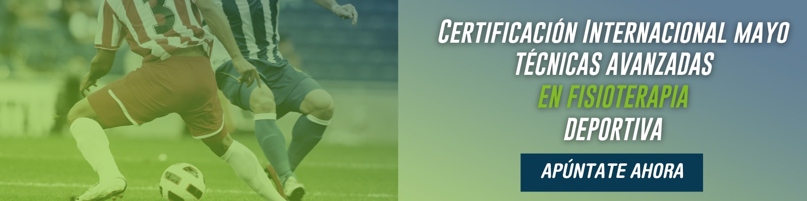 Certificación Online en Técnicas Avanzadas en Fisioterapia Deportiva (TAFD)